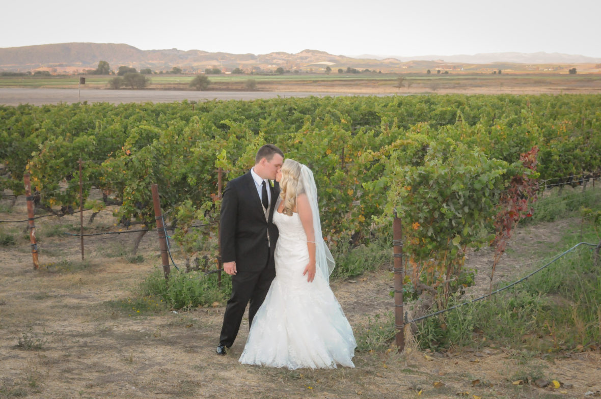 Wedding Photographer in Sonoma